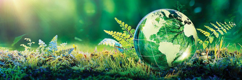 elaphe vì môi trường xanh